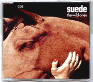 20060719171731-the-wild-ones-suede.jpg